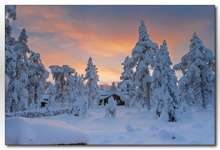 Sunrise above the pines - Norway 2016-023. Norway - great winter wedding photography location